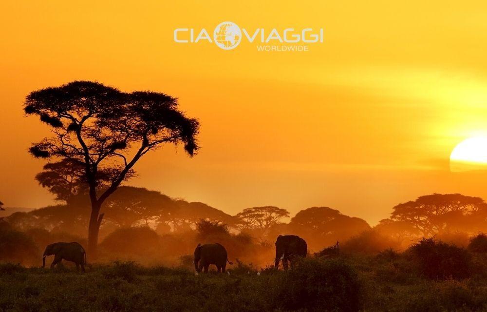 https://www.ciaoviaggi.it/wp-content/uploads/2020/04/kenya-tramonto-1000x640.jpg